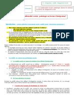 fiche 2211- Conflit social pathologie ou intégrateur.doc