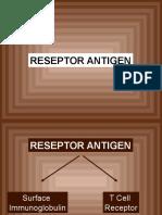 Reseptor Ag.