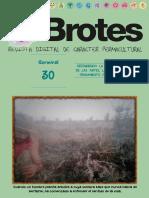revista_brotes_0030