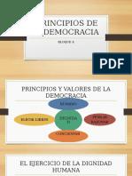 principios de la democracia FCyE 8°