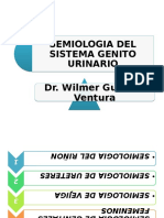 semiologadelsistemagenitourinario-100504000327-phpapp02.pptx