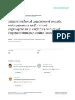 Simple hormonal regulation of high efficiency somatic embryogenesis and.pdf