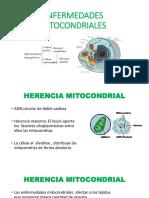 14 Herencia Multifactorial