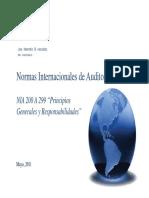 NIA 200a299 Principios Generales y Responsabilidades PedroPinto