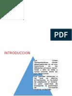 DIAPOS-DE-FRANJA-TRASNPORTADORA (1).pptx