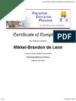 fostering reflective practice certificate