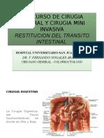 Restitucion Del Transito Intestinal