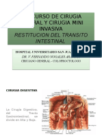 Restitucion Del Transito Intestinal