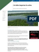 Relevancia de La Selva Amazónica Para Bogotá - Ciencia - Vida - ELTIEMPO