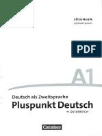 Pluspunkt Deutsch a 1_Lösungen