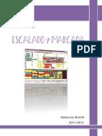 Manual INVESTRONICA.pdf