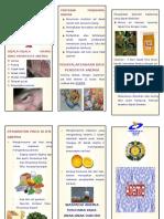 100464284-Leaflet-Anemia.doc