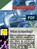 79d51f4d7e4d54d54b55519c3b462d00-original.pdf
