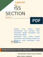 Alk Cross Section