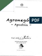 Apostila Agronego_cio Prof Nildo Cassunde