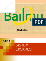 Bab Sistem Ekskresi