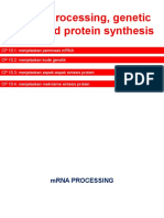 TM-11 MRNA Processing, Genetic Code, And Protein Synthesis (Genap 2014-2015)