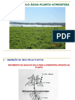 Irrigacao-aula 2.pdf