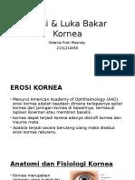 Erosi & Luka Bakar Kornea