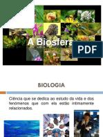 1. Biodiversidade