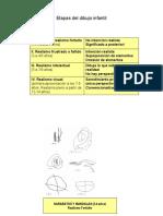 Etapas del dibujo Luquet.pdf