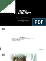 11.- EL AMBIENTE - 2016.pptx