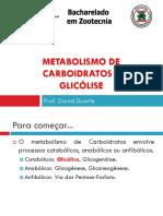 MET3 - GLICÓLISE
