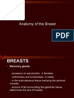 Anatomy of the Breast.ppt