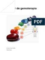 Manual de Gemoterapia