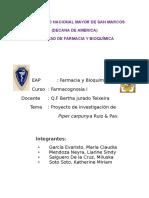 Monografía Del Proyecto de Investigación Piper Carpunya Ruiz Pav