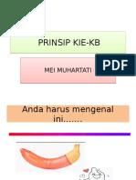 ibu mei (kb)PRINSIP KIE.pptx
