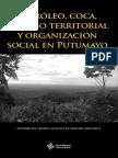 CENAMEHI - petroleo, coca, despojo y territorial.pdf