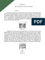 GE4 - Tensão Superficial e Capilaridade