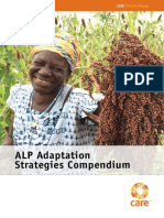 Adaptation Strategies Compendium