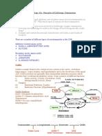 Pharmacology 18a Priciples of GABAergic Transmission