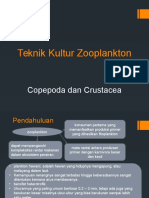 Teknik Kultur  Copepoda-Crustacea.pptx