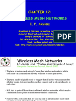 Wireless Mash Network