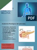 Cap. 78. Insulina Glucagon y DM
