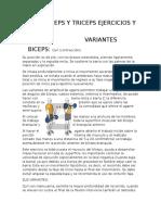 BICEPS Y TRICEPS EJERCICIOS Y SUS.docx