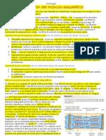 Tema 4 .docx