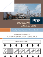 Tema 4 - Endulzamiento Del Gas Natural