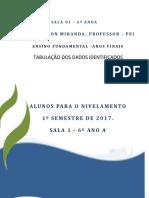 Tabulação de Resultados de Desempenho - Plano de Ação Inicial 2017 Mês de Fevereiro