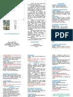 FOLDER DA SEMANA SANTA 2017.pdf