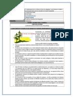 Proyecto Sena 2015