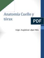 Clase 2 - Anatomía Cuello y Tórax Anatomia