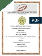 312084205-Constitucionalismo-Ambiental-en-El-Peru-y-El-Derecho-Comparado.pdf