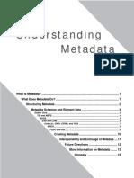 20791949-Understanding-Meta-Data.pdf