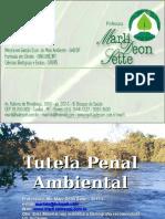 07 Tutela Penal Do Meio Ambiente