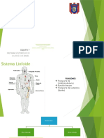 Sistema Linfo