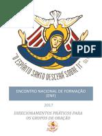 Direcionamentos - Enf-2017 (1)
